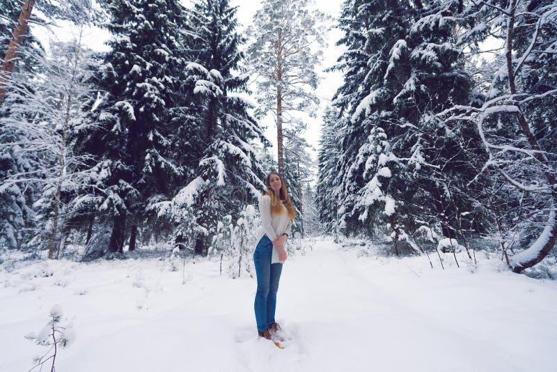 Красивый портрет девушки в лесе зимы стоковое изображение rf