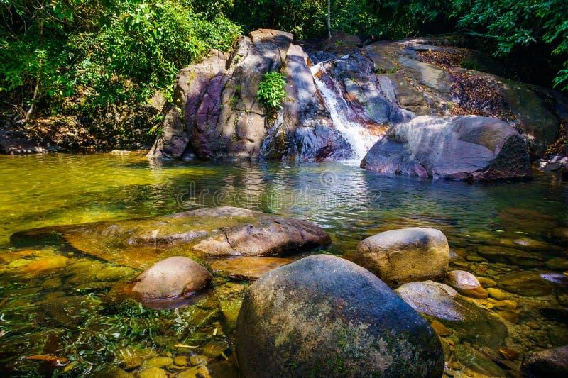 Красивый поток в национальном парке Lak Cao стоковые изображения