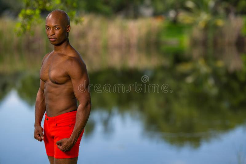 Красивый представлять молодого человека без рубашки в парке стоковое фото rf