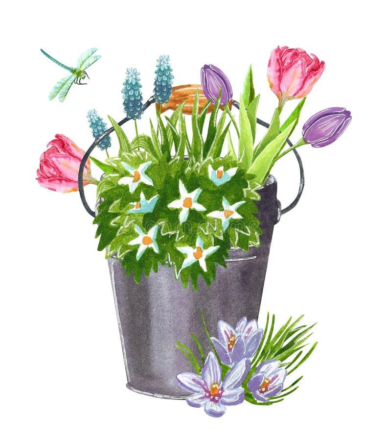Красивый предыдущий букет цветков сада весны в ведре иллюстрация вектора