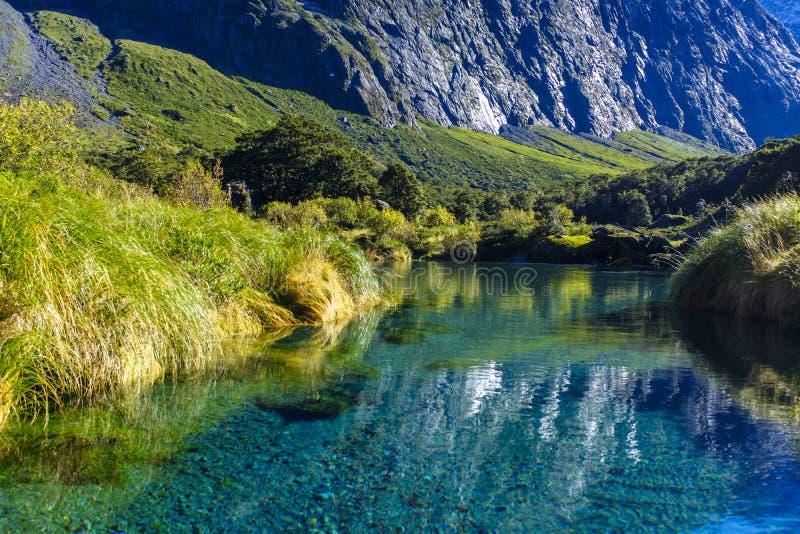 Красивый прозрачный поток в долине стоковое изображение