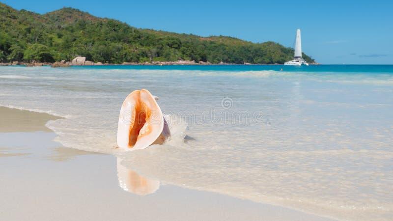 Красивый пляж на тропическом острове стоковое фото