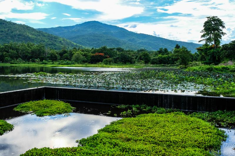 Красивый резервуар в середине долины стоковое изображение rf