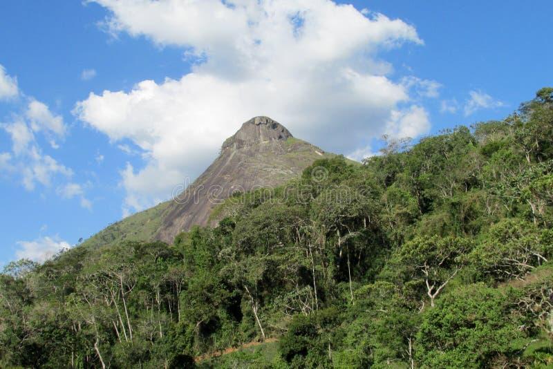 Красивый ровный утес в джунглях, Бразилии стоковые фотографии rf