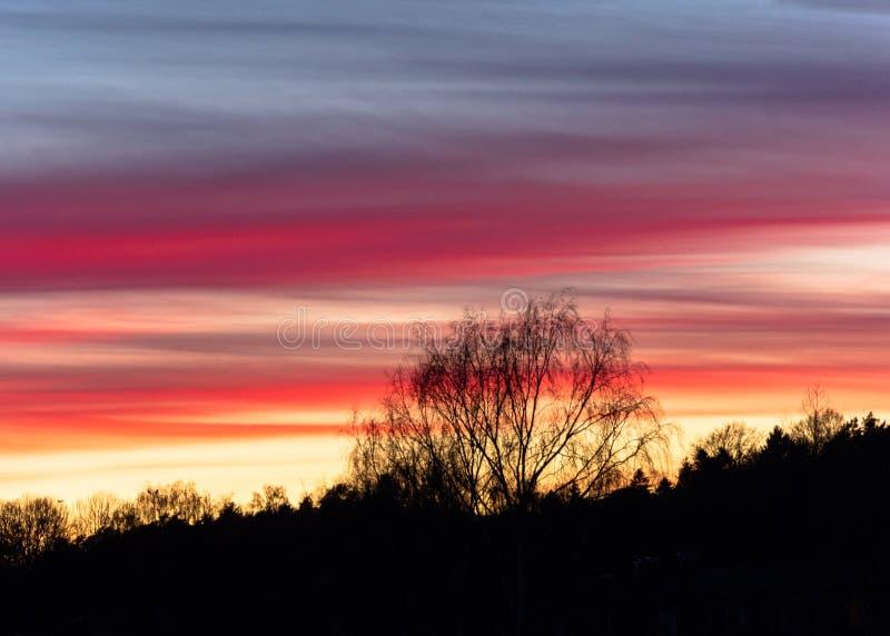 Красивый розовый закат готенбургский сведен стоковые фотографии rf