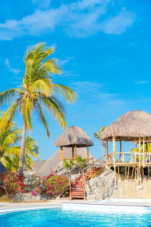 Красивый роскошный ландшафт вокруг бассейна в курорте гостиницы стоковое фото rf