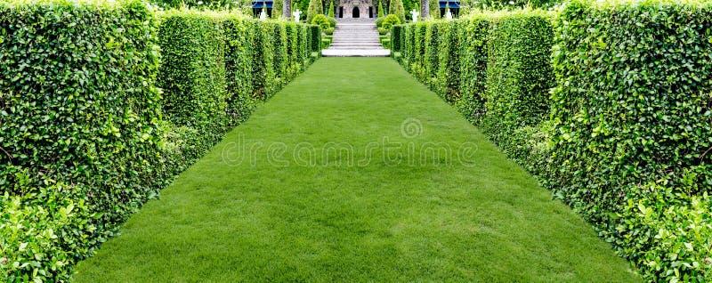 Красивый сад walkwayin зеленой травы стоковое фото rf