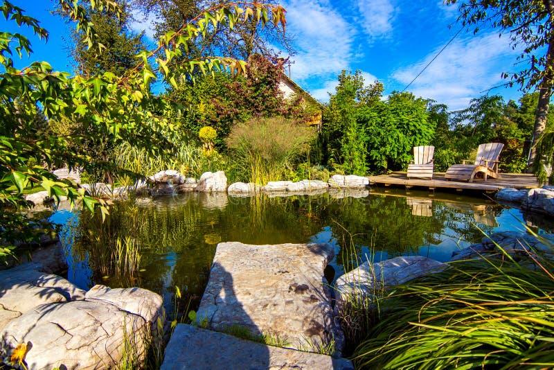 Красивый сад с прудом стоковые изображения