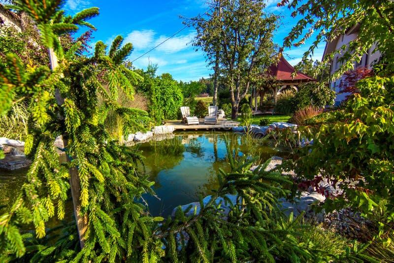 Красивый сад с прудом стоковое фото