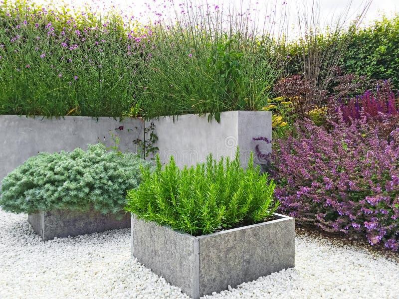 Красивый сад с современным дизайном стоковые фотографии rf