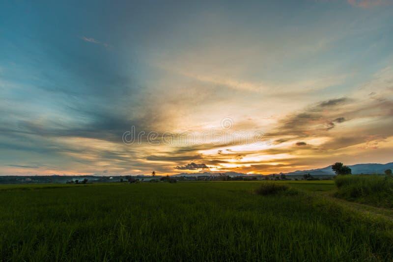 Красивый свет захода солнца стоковое фото