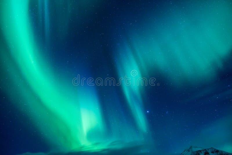 Красивый северный свет стоковые фотографии rf