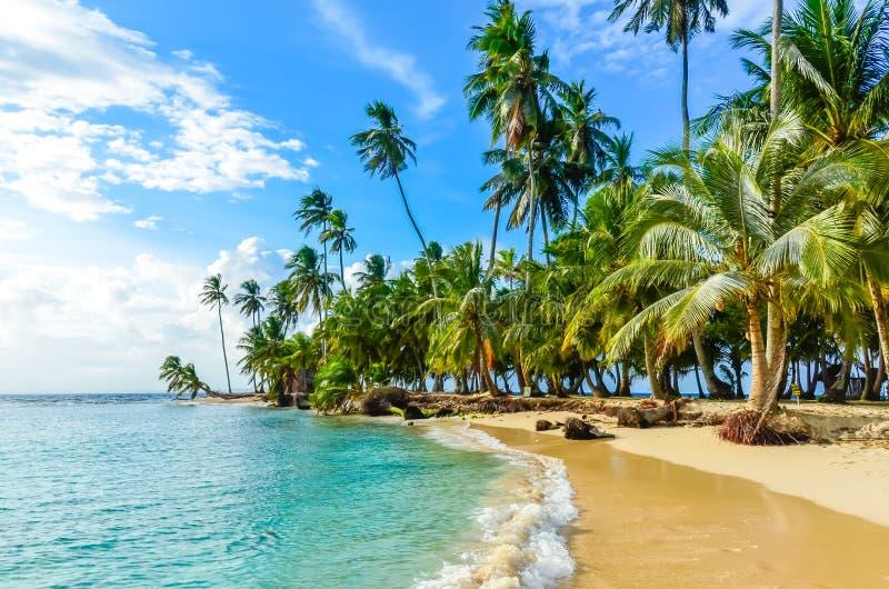 Красивый сиротливый пляж в карибском острове Сан Blas, Kuna Yala, Панаме Море бирюзы тропическое, назначение перемещения рая, стоковое изображение