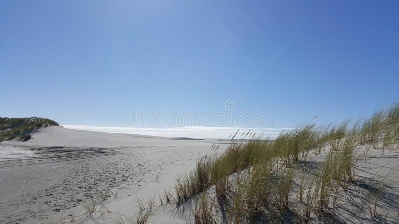 Красивый солнечный день в белом песчаном пляже прощального вертела Новой Зеландии стоковые изображения rf