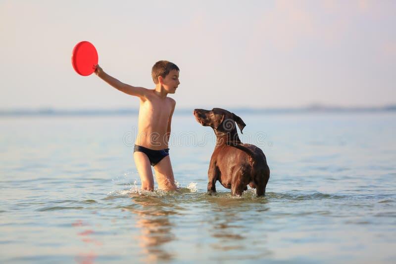 Красивый солнечный пейзаж лета На день небольшой мальчик игра, подряд скача с охотясь коричневой собакой на озере стоковые изображения