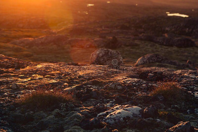 Красивый солнечный луч захода солнца над мшистыми утесами и лугом стоковые изображения rf