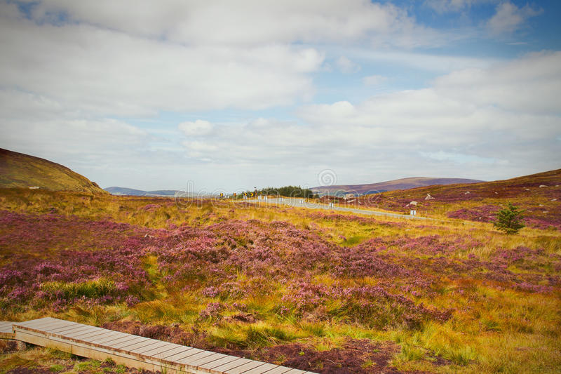 Красивый сценарный ландшафт горы Горы национальный парк Wicklow, графство Wicklow, Ирландия стоковая фотография rf