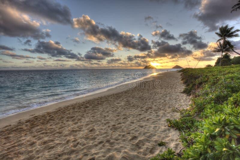 Красивый сценарный пляж Оаху Гаваи LaniKai стоковое изображение rf