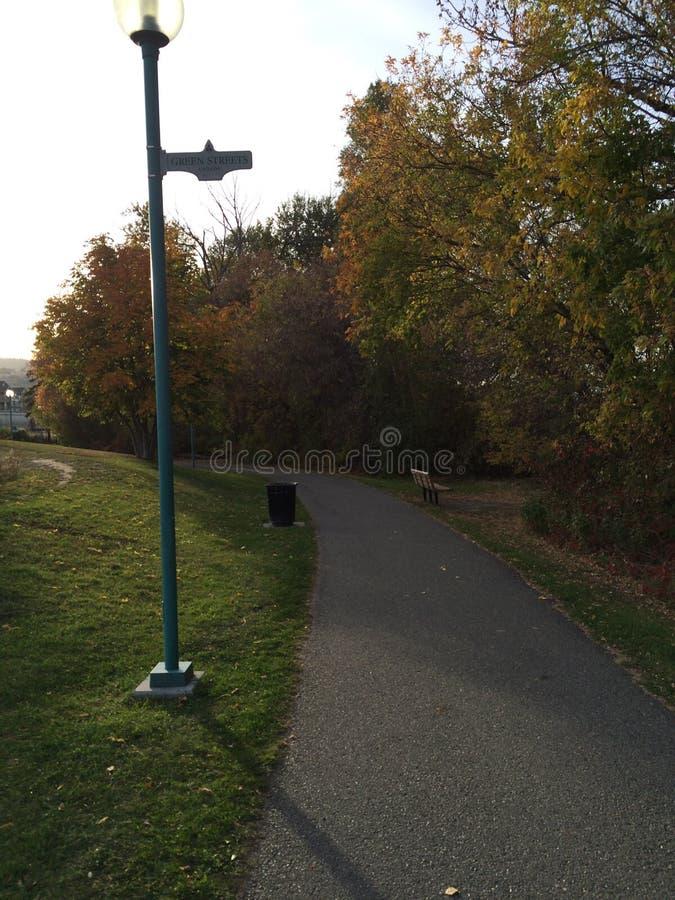 Красивый сценарный след в парке расположенном в городе kamloops стоковое фото rf