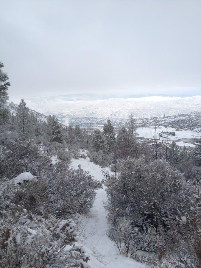 красивый след зимы около окраин kamloops стоковые фото