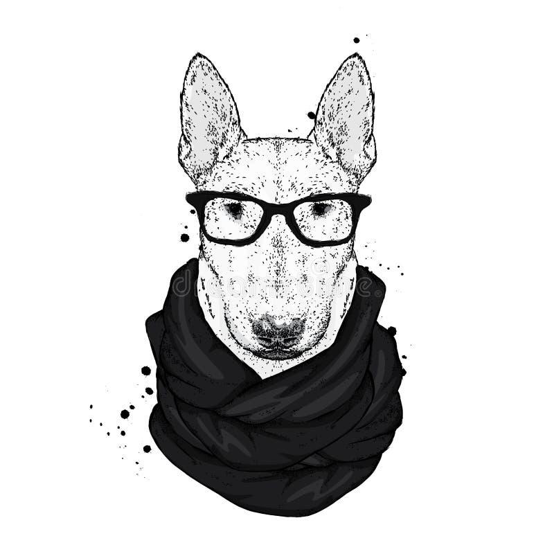 Красивый терьер быка с стеклами и шарфом Иллюстрация вектора с собакой племенника Битник бесплатная иллюстрация