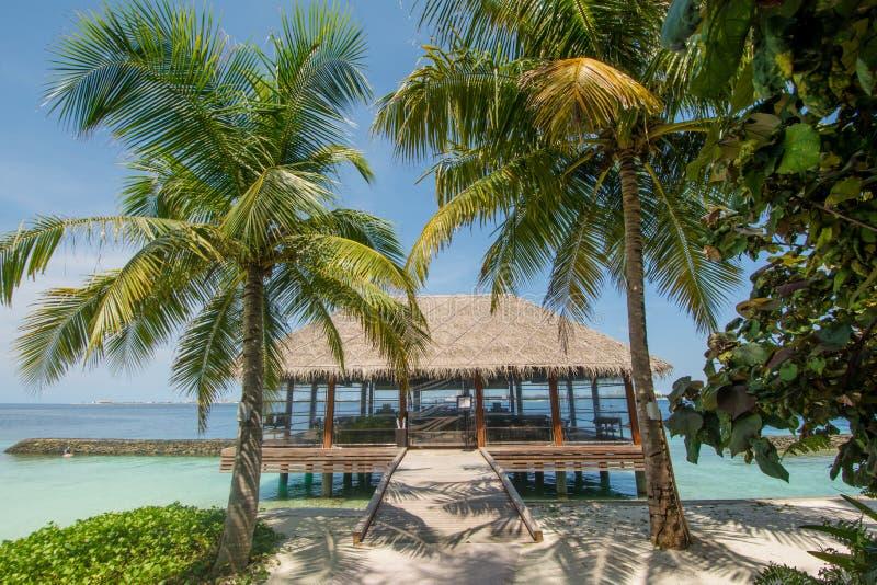 Красивый тропический взгляд ландшафта с рестораном и пальмы приближают к океану стоковое фото rf