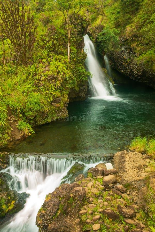 Красивый тропический водопад на Мауи стоковая фотография rf