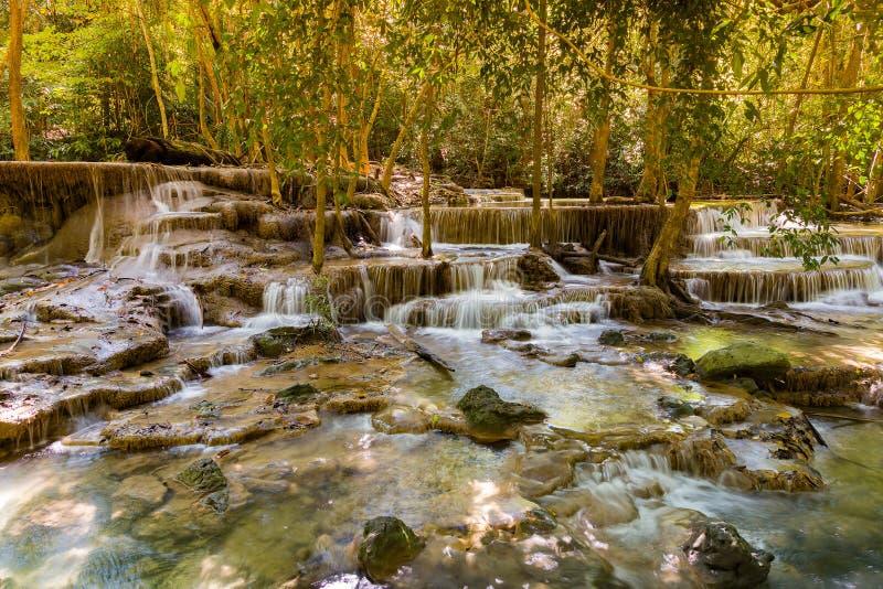Красивый тропический водопад потока стоковое фото