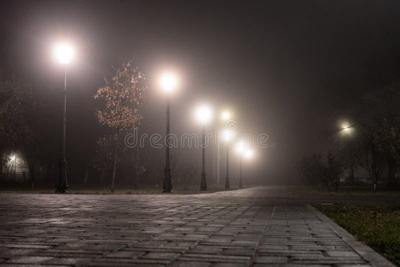 Красивый туманный вечер в переулке осени с горящими фонариками Тропа в парке города вечером в тумане с уличными светами стоковое фото rf