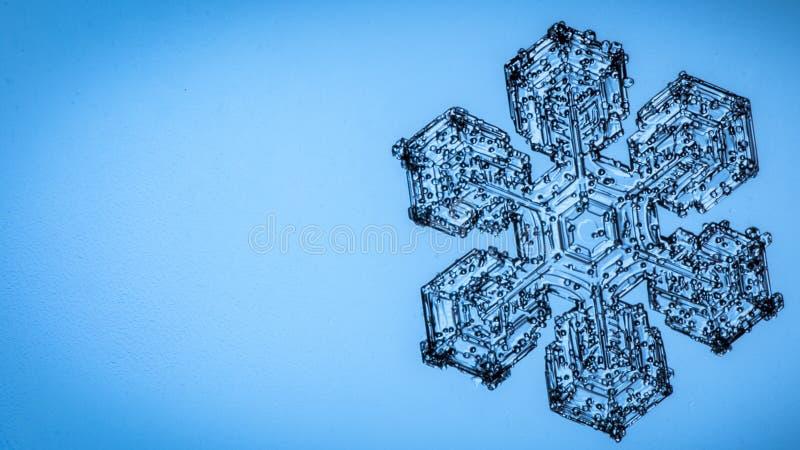 Красивый хлопь снега на светлом - голубой конец предпосылки вверх стоковые фотографии rf