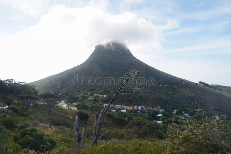 Download Красивый холм сигнала, Кейптаун, Южная Африка Стоковое Фото - изображение насчитывающей панорама, кабель: 81813580