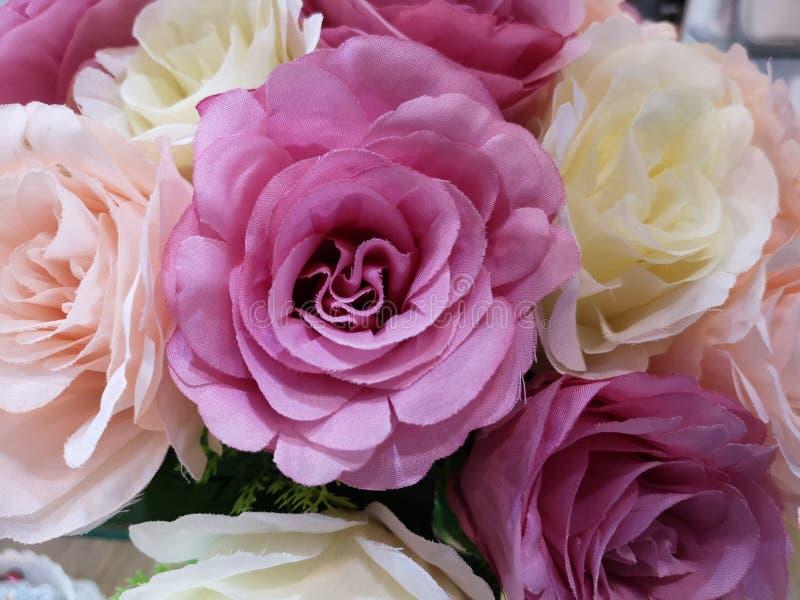 Красивый цвет искусственного дисплея роз для дома и дизайна интерьера стоковое изображение rf
