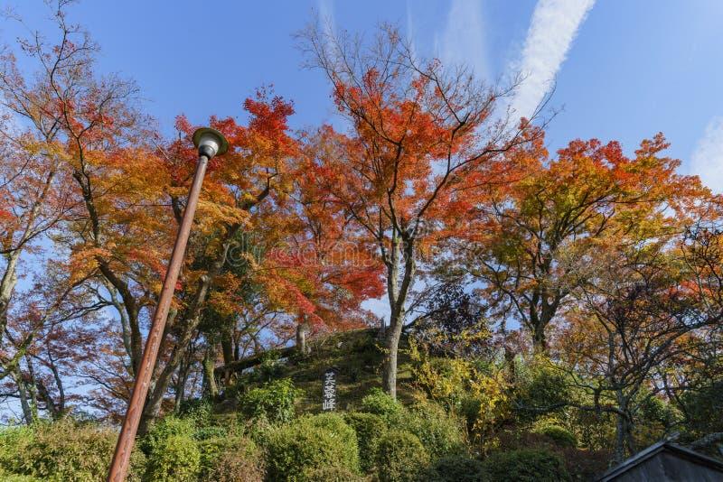 Красивый цвет падения около Hiyoshi Taisha стоковые изображения rf