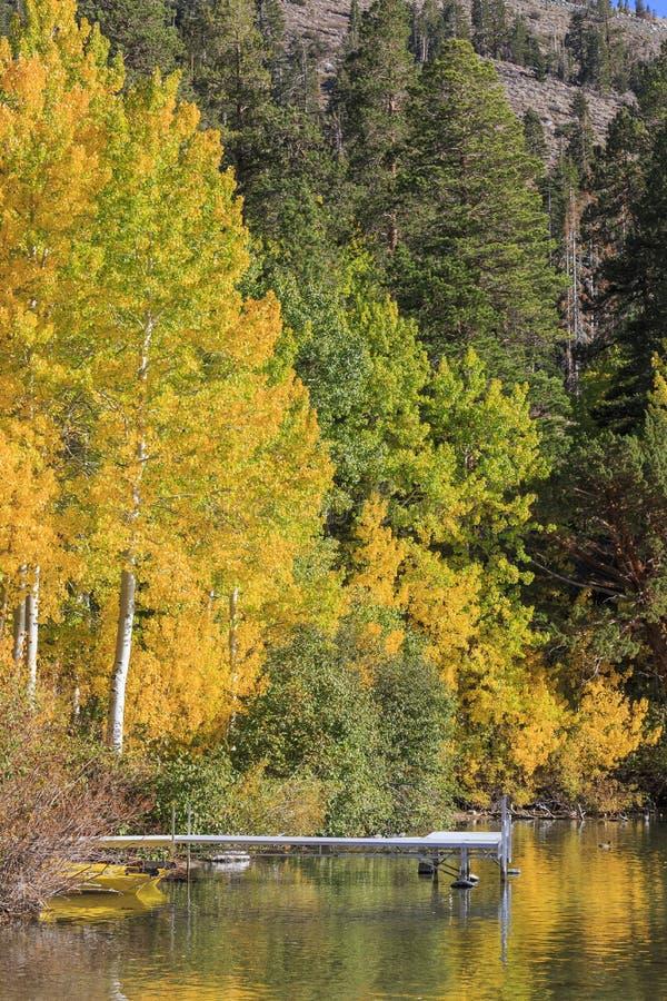 Красивый цвет падения в Калифорнии стоковое изображение rf