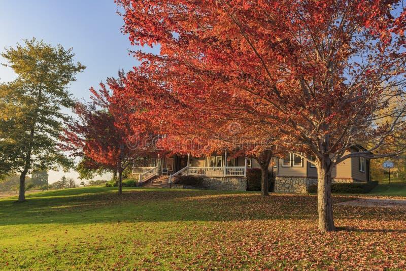 Красивый цвет падения над зоной Глена дуба стоковые фотографии rf