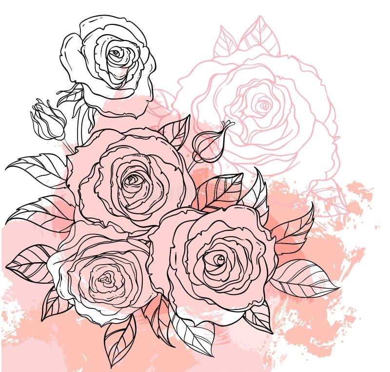 Красивый чертеж букета роз на бежевой предпосылке grunge Рука иллюстрация вектора