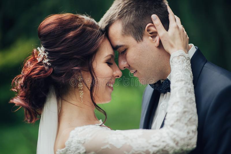Красивый шикарный жених и невеста идя в солнечный парк и kis стоковая фотография rf
