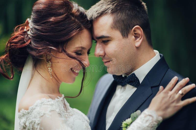 Красивый шикарный жених и невеста идя в солнечный парк и kis стоковые изображения