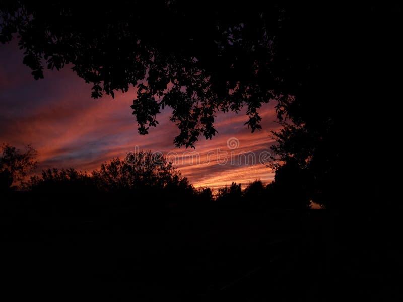 Красивый южный заход солнца Техаса в долине Рио Гранде стоковые фото