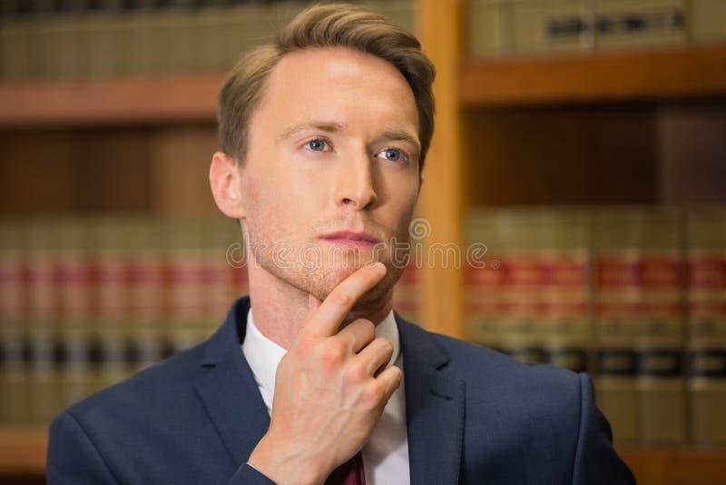 Красивый юрист в библиотеке закона стоковые изображения