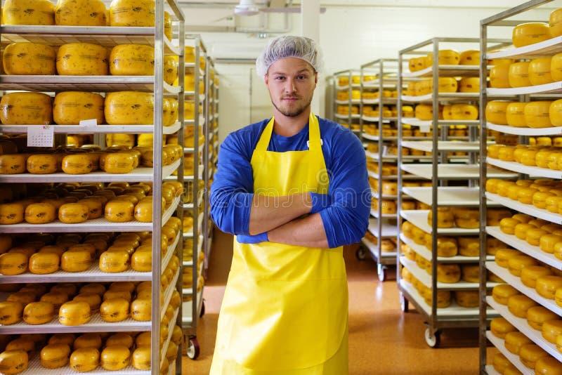 Красивый cheesemaker проверяет сыры в его хранении мастерской стоковое фото