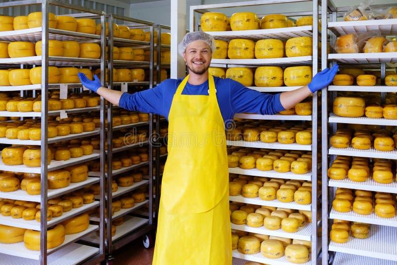 Красивый cheesemaker проверяет сыры в его хранении мастерской стоковая фотография rf