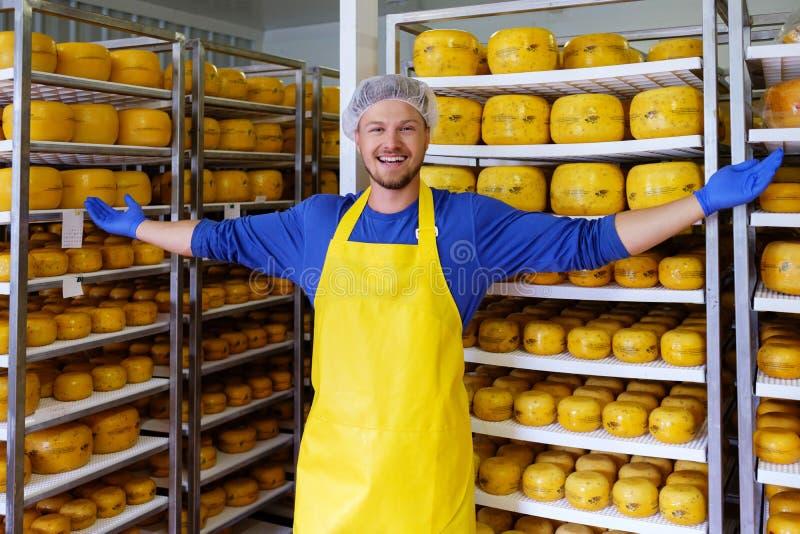 Красивый cheesemaker проверяет сыры в его хранении мастерской стоковые изображения rf