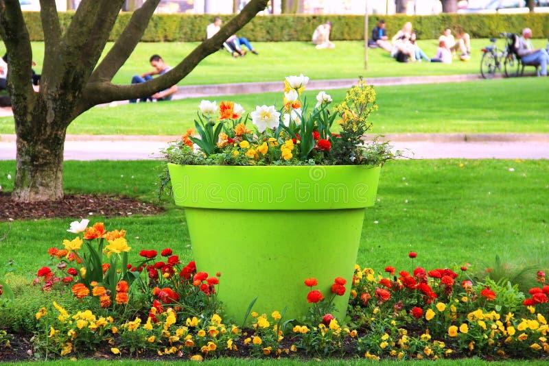 Download Красивый Flowerbed в парке в страсбурге Стоковое Фото - изображение насчитывающей трава, завод: 40586692