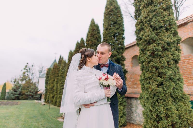 Красивый groom целует его элегантную новую жену около строки кипариса в зеленом парке стоковая фотография rf