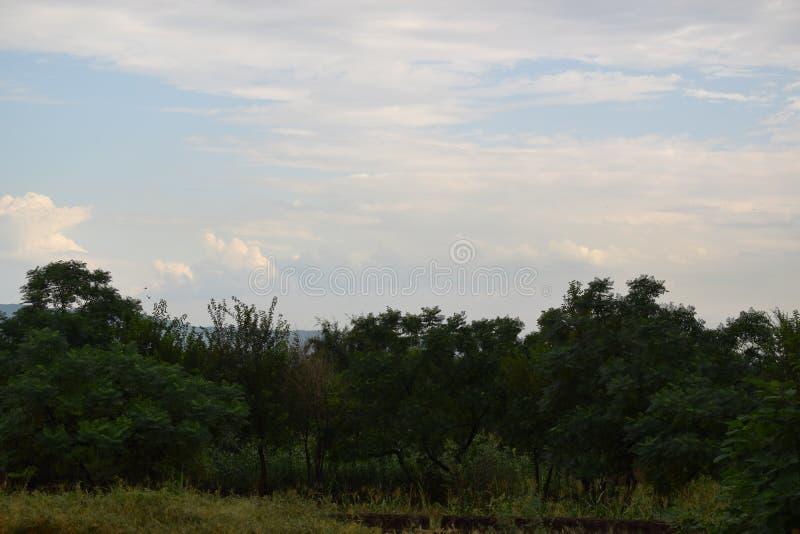 Красивый landscap стоковое фото