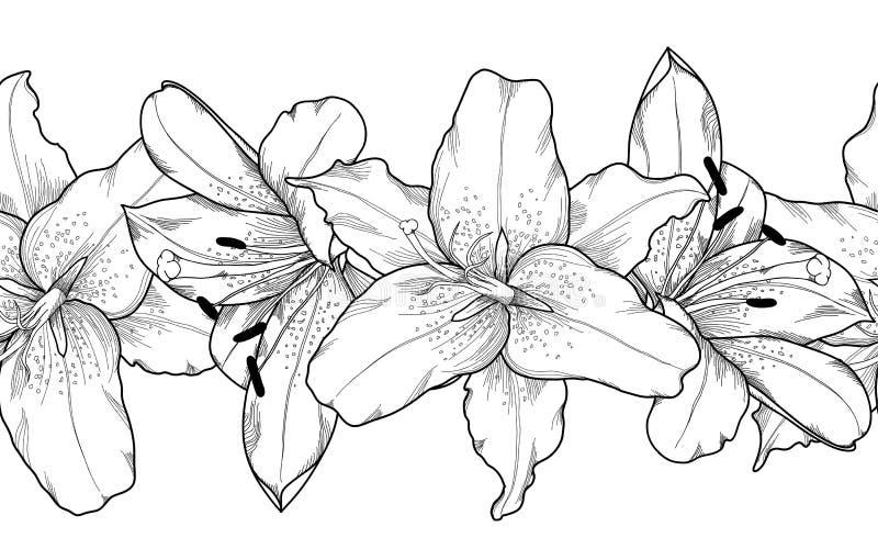 Красивый monochrome, черно-белый безшовный горизонтальный элемент рамки серой лилии цветет иллюстрация вектора