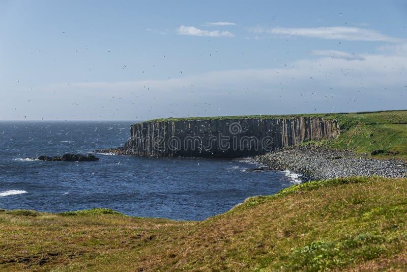 Красивый seashore острова близрасположенной Исландии Grimsey, временени стоковое фото rf