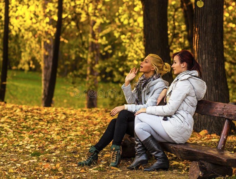 2 красивых женских друз отдыхая на стенде в парке стоковое изображение rf