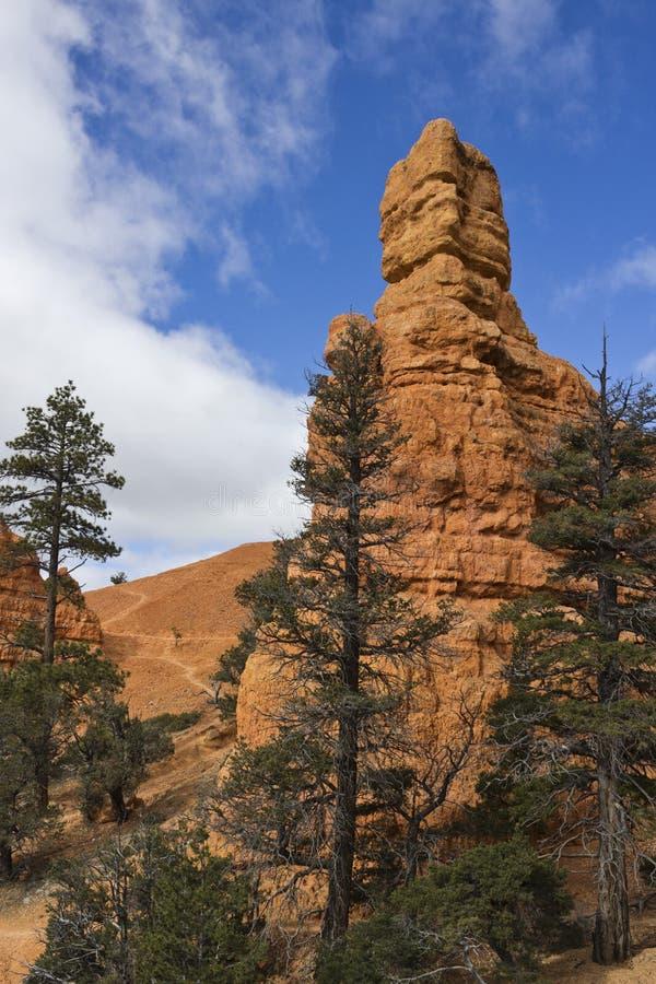 Красная башня Hoodoo каньона стоковые изображения rf